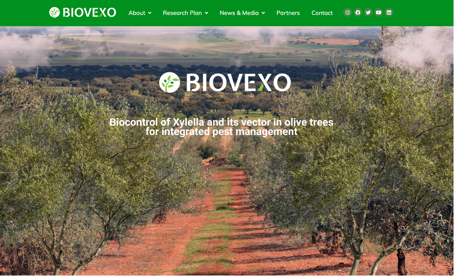 biovexo project