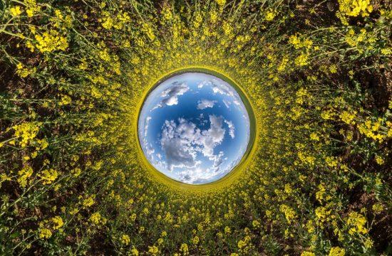 BIOeconomy Image shutterstock_1770103604